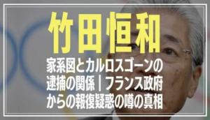 竹田恒和の家系図とカルロスゴーン逮捕の関係がヤバい?フランス政府の報復疑惑の噂も