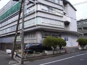 芳根京子 経歴